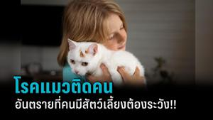 """""""โรคแมวติดคน"""" อันตรายที่คนมีสัตว์เลี้ยงต้องระวัง!!"""