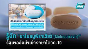 """รู้จัก """"ยาโมลนูพิราเวียร์ (Molnupiravir )""""  รัฐบาลเตรียมนำเข้ารักษาโควิด-19"""