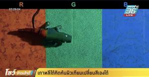 เกาหลีใต้คิดค้นผิวเทียมเปลี่ยนสีเองได้