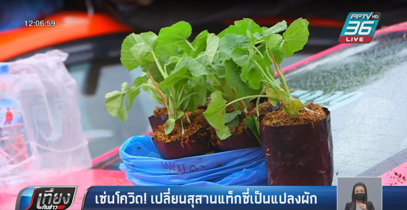 เซ่นโควิด! เปลี่ยนสุสานแท็กซี่เป็นแปลงผัก