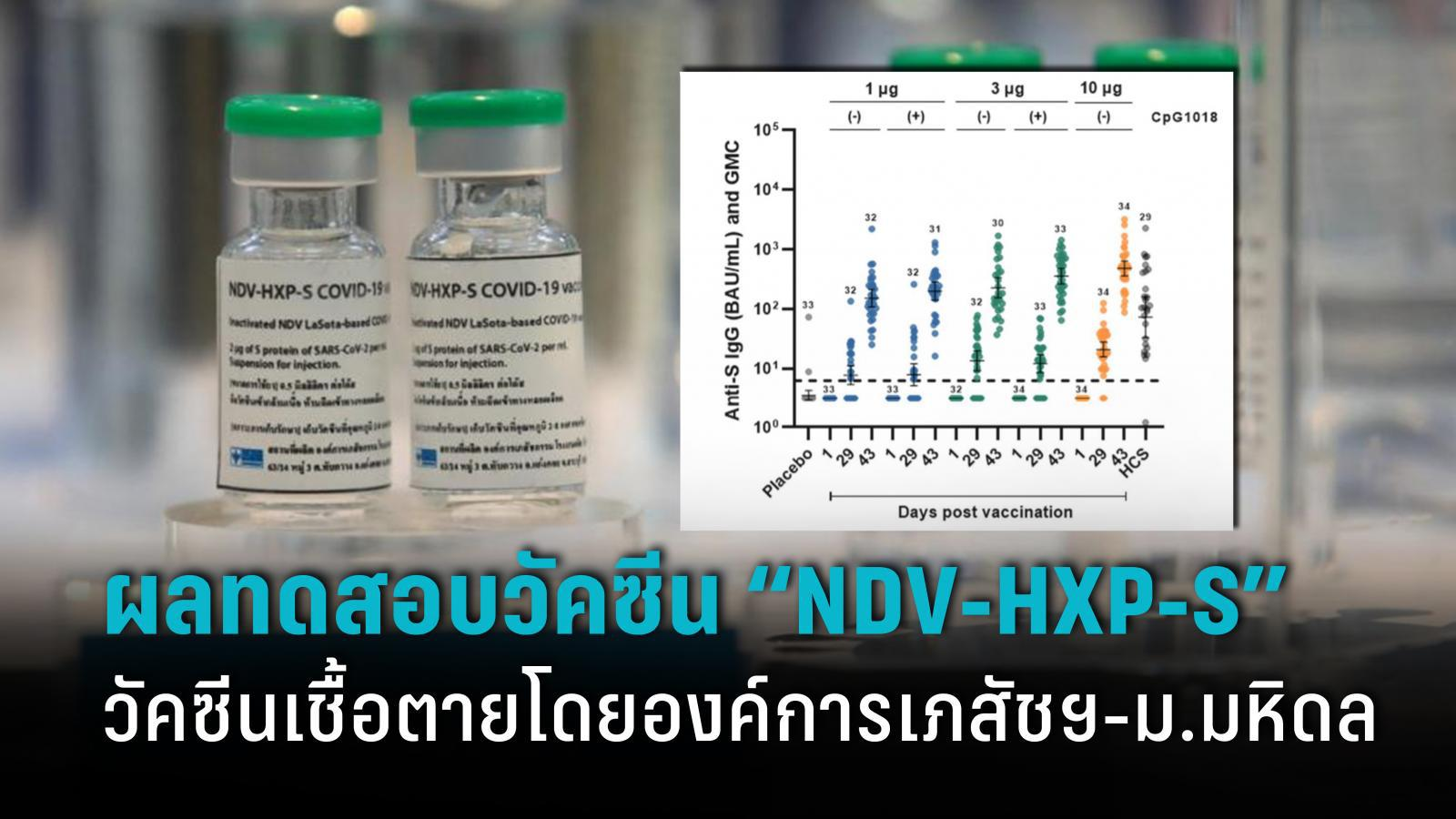 """เปิดผลการทดลอง """"NDV-HXP-S"""" วัคซีนโควิด-19 ชนิดเชื้อตายฝีมือคนไทย"""