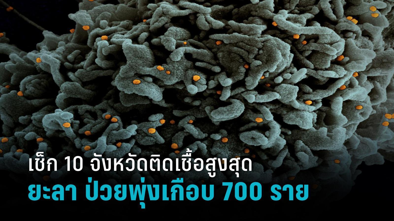 เช็ก 10 จังหวัดติดเชื้อโควิด-19 สูงสุด ยะลา น่าห่วงป่วยรายใหม่พุ่งเกือบ 700 ราย