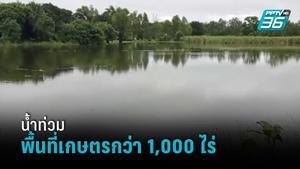 อ.พิมาย น้ำท่วมพื้นที่เกษตรกว่า 1,000 ไร่