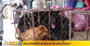 ประธานาธิบดีเกาหลีใต้แย้มถึงเวลาห้ามกินเนื้อหมา