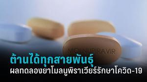 """ผลทดลองใช้ยาต้านโควิด-19 """"โมลนูพิราเวียร์"""" พร้อมไทม์ไลน์นำเข้าใช้ในไทย"""