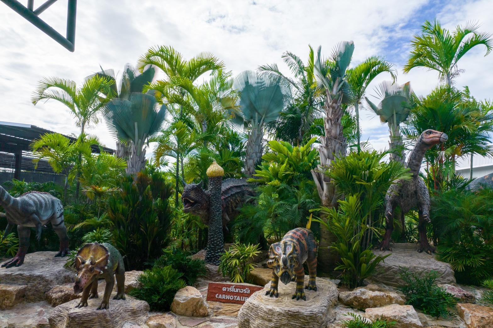 """สวนนงนุชพัทยา ต้อนรับเอกอัครราชทูตคิวบา เยี่ยมชม """"ปาล์มที่สวยที่สุดในโลก"""" และใกล้สูญพันธุ์"""