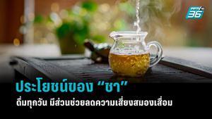 """ประโยชน์ของ """"ชา"""" ดื่มทุกวัน มีส่วนช่วยลดความเสี่ยงสมองเสื่อม"""